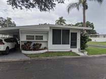 Homes for Sale in Twin Lakes, Clearwater, Florida $15,500