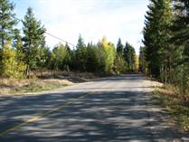 Lots and Land for Sale in Clearwater, British Columbia $69,900