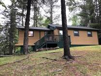 Homes for Sale in Vilas, Eagle River, Wisconsin $229,900