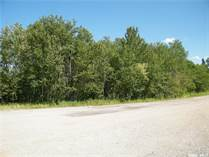 Lots and Land for Sale in Middle Lake, Saskatchewan $13,000