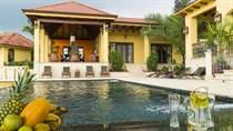 Homes for Sale in Cajon , Perez Zeledon, San José $4,800,000