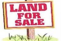 Lots and Land for Sale in Deer Park, Salmonier Line, Newfoundland and Labrador $79,900