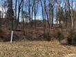 Lots and Land for Sale in Byrnes Mill, Missouri $35,000