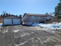 Homes for Sale in Wolseley, Saskatchewan $237,000