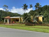 Homes for Sale in Bo. Arenas, Utuado, Puerto Rico $310,000