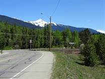 Commercial Real Estate for Sale in Valemount, British Columbia $198,000