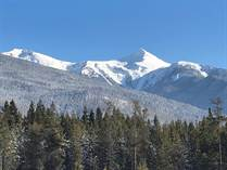 Lots and Land for Sale in Valemount, British Columbia $418,000