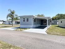Homes for Sale in Palm Tree Acres Mobile Home Park, Zephyrhills, Florida $16,000