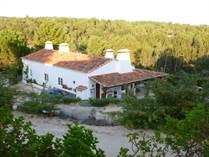 Farms and Acreages for Sale in Santarém, Santarem €480,000