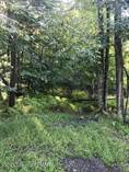 Lots and Land for Sale in Pocono Pines, Pennsylvania $40,000