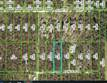 Lots and Land for Sale in Weeki Wachee, Florida $35,900