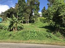 Homes for Sale in Guavate, Cayey, Puerto Rico $49,000