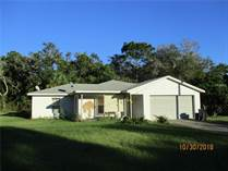 Homes for Sale in Spring Hill, Florida $147,900