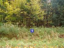 Lots and Land for Sale in Merrill, Wisconsin $39,000