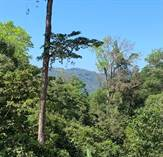 Lots and Land for Sale in Dominical, Puntarenas $183,000