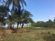 Homes for Sale in Tarcoles, Playa Axul, Puntarenas $150,000