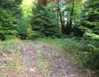 Recreational Land Sold in Bracebridge, Ontario $420,000