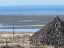Lots and Land for Sale in Sonora, Puerto Penasco, Sonora $59,900