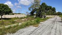 Lots and Land for Sale in Residential Bavaro Punta Cana, La Altagracia $55