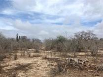 Lots and Land for Sale in Elias Calles, Baja California Sur $120,000