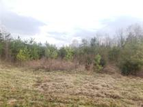 Lots and Land for Sale in Burlington, North Carolina $63,900