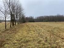 Lots and Land Sold in Elzevir, Tweed, Ontario $59,900