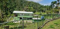 Homes for Sale in Cubuy, CANOVANAS, PUERTO RICO, Puerto Rico $224,000