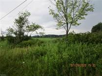 Lots and Land for Sale in Ohio, Lenox, Ohio $268,000