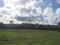 Lots and Land for Sale in Cabrera, Maria Trinidad Sanchez $127,500