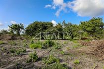 Lots and Land for Sale in Orange Walk , Carmelita Village, Orange Walk $6,000