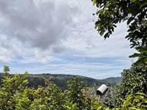Farms and Acreages for Sale in Pérez Zeledón, Platanillo, Baru, Perez Zeledon, Costa Rica, San José $400,000