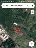 Lots and Land for Sale in Downtown, Bacalar, Quintana Roo $17,800
