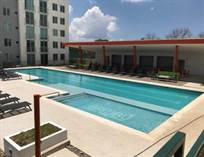 Other for Rent/Lease in Heredia, Heredia $800 monthly