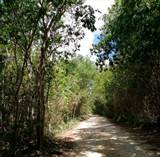 Lots and Land for Sale in Playa del Carmen, Quintana Roo $2,442,860