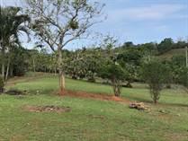 Homes for Sale in Parrita, Puntarenas $225,000
