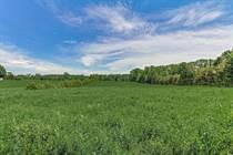 Homes Sold in Walsingham, Ontario $309,000