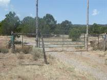 Lots and Land for Sale in New Mexico, Tres Piedras, New Mexico $140,000