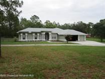 Homes Sold in Brookridge, Florida $499,000