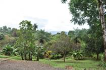Lots and Land for Sale in Golfito, Puntarenas $695,000