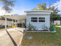 Homes for Sale in Fish Haven Lodge, Auburndale, Florida $14,800