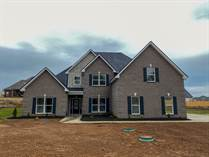 Homes for Sale in Murfreesboro, Tennessee $389,900