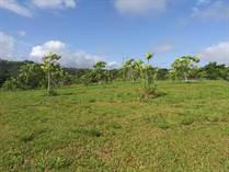 Homes for Sale in Caguana, Utuado, Puerto Rico $500,000