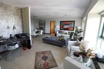 Condos for Rent/Lease in Condo. Gallery Plaza, San Juan, Puerto Rico $3,000 monthly