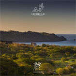 Lots and Land for Sale in Playa Conchal, Guanacaste $595,000