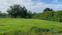 Lots and Land for Sale in Uvita, Puntarenas $46,500