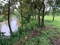 Farms and Acreages for Sale in San Carlos, Alajuela $267,500