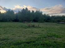 Lots and Land for Sale in Oma, Wisconsin $49,900