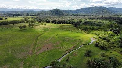 1836 Acre farm with streams and primary jungle at the basin of Sierpe