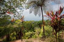 Lots and Land for Sale in Golfito, Puntarenas $148,000