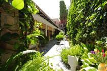 Homes for Sale in Centro, San Miguel de Allende, Guanajuato $980,000